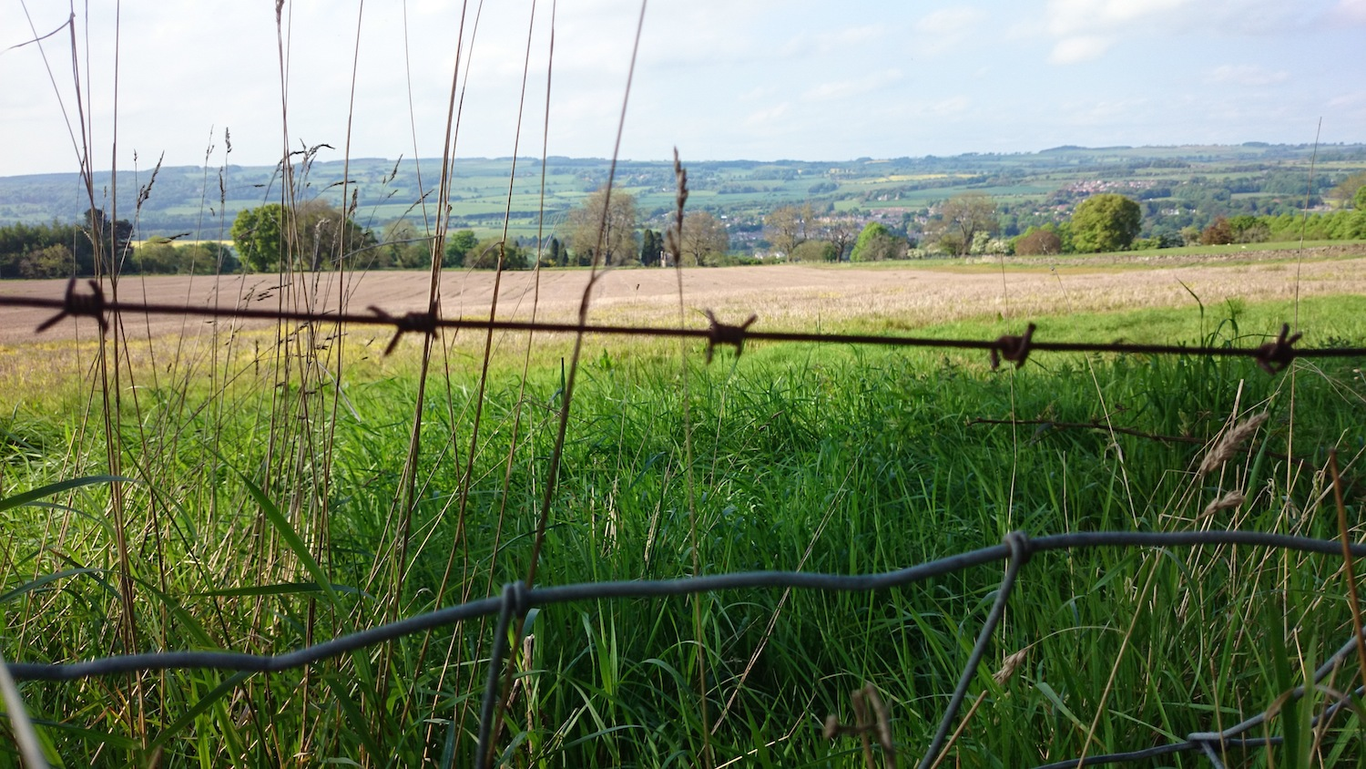 barbed wire view